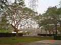AIT - panoramio - Seksan Phonsuwan (126).jpg