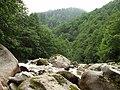 AYDER-ÇAMLIHEMŞİN DERESİ TEMMUZ 2010 - panoramio.jpg
