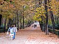 A Fall Day in Madrid's Parque de Retiro (6382428169).jpg