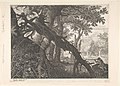 A Forest with a Rabbit Hunt MET DP804241.jpg