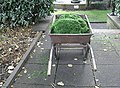 A barrow load of grass - geograph.org.uk - 947317.jpg