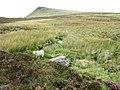 A moorland stream feeding Llyn Newydd - geograph.org.uk - 562306.jpg