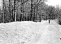 A series of cleared off linear mounds on top the Mississippi River bluffs, Wyalusing State Park, Wisconsin. Figure is (9d60af71893b4a4aa41955494207757f).jpg