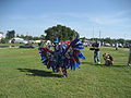 AboutToFlyBayouIndianDSS2009.jpg