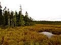 Acadia National Park (8111144367).jpg