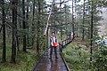 Aershan Scenic Area in Inner Mongolia 2015 74.jpg