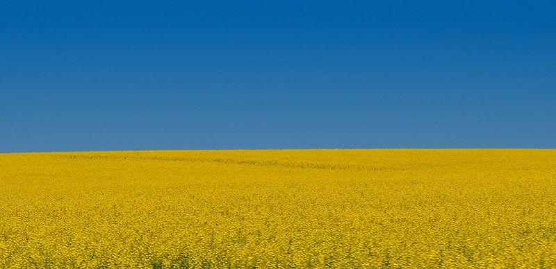 File:Alberta July 2011.jpg