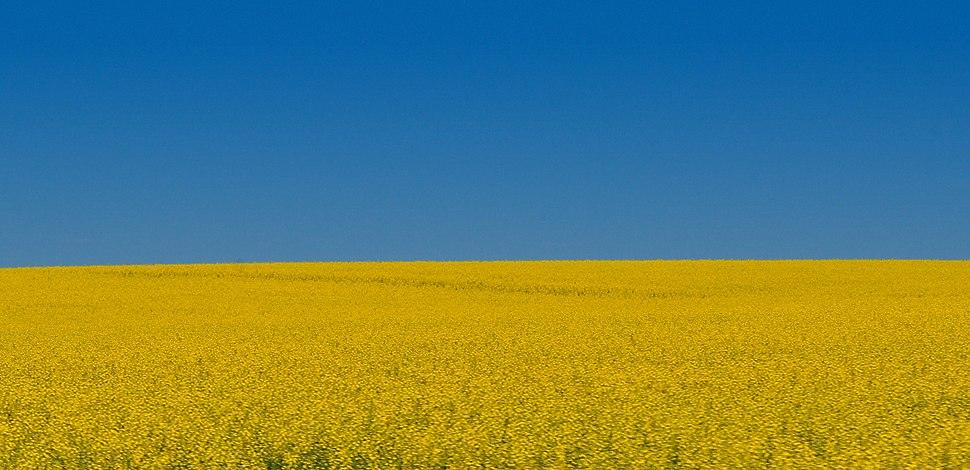 Alberta July 2011
