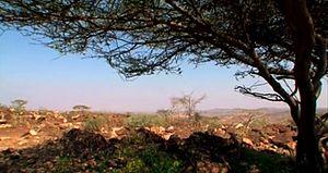 Ali Sabieh Region - Ali Sabieh Region landscape