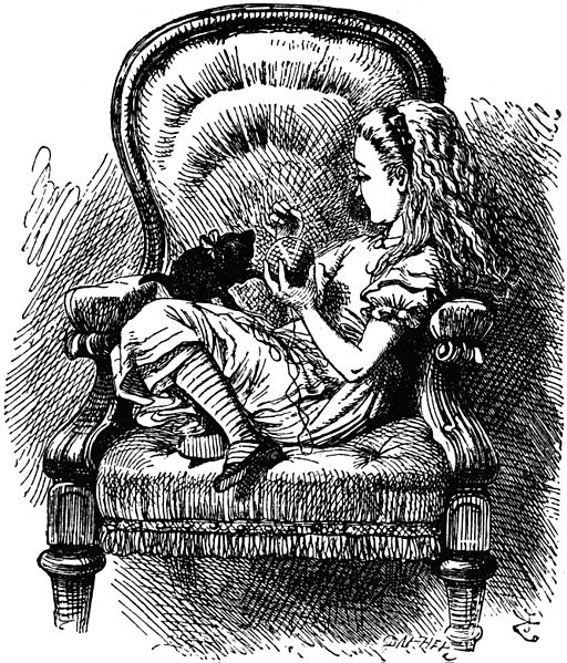 Alice and kitten