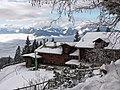 Alpenpflanzengarten im Winter 02.jpg