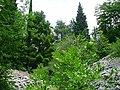 Alpinum na Zavizanu - botanicka zahrada vysokohorske flory,.jpg
