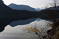 Altausseer See 78932 2014-11-15.JPG