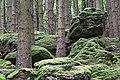 Altburgbachtal im Naturschutzgebiet Schönecker Schweiz Kreis Bitburg,Prüm 02.jpg