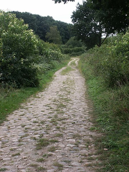 Old Salt Route in Northern Germany – historical pavement near Breitenfelde.  Exploring Germany's Old Salt Road