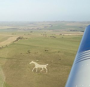 Alton Barnes White Horse - The horse from the air in 2015.