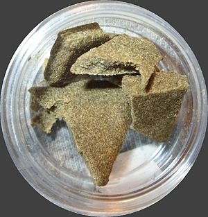 Medical cannabis - American medical hashish