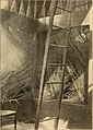 American telephone practice (1905) (14733377126).jpg