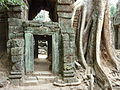 Angkor - Ta Prohm - 003 Door and Tree (8580825471).jpg