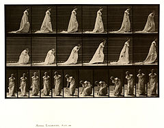 Animal locomotion. Plate 209 (Boston Public Library).jpg