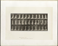 Animal locomotion. Plate 55 (Boston Public Library).jpg