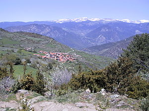 Cava, Lleida - Ansovell