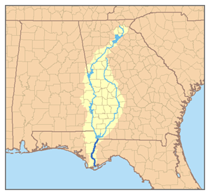 Apalachicola River - Map of the Apalachicola River watershed showing the two main tributaries, the Chattahoochee River and the Flint River.