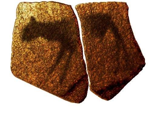 Howiesons poort prehistoria