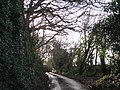 Approaching the summit of Cofton Hill - geograph.org.uk - 1621231.jpg