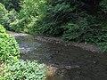 Armstrong Creek WV.jpg