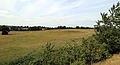 Art earthwork landscape sculpture Woodland Trust Theydon Bois Essex 12.JPG