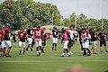 Atlanta Falcons training camp July 2016 IMG 7529.jpg