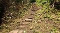 Auchinleck Castle Well steps, East Ayrshire, Scotland.jpg