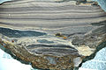 Auriferous opalite, Vulcan Mine, Colorado 2 (14550787507).jpg