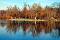Auslikon - Strandbad 2012-01-18 15-15-30.JPG