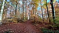 Autumn in Sauvabelin.jpg