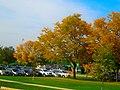 Autumn in Warner Park - panoramio (1).jpg