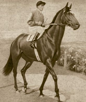 Australian Racing Hall of Fame - Bernborough was an inaugural inductee into the Racing Hall of Fame.