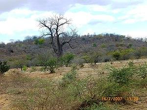 Moatize - Landscape in Moatize