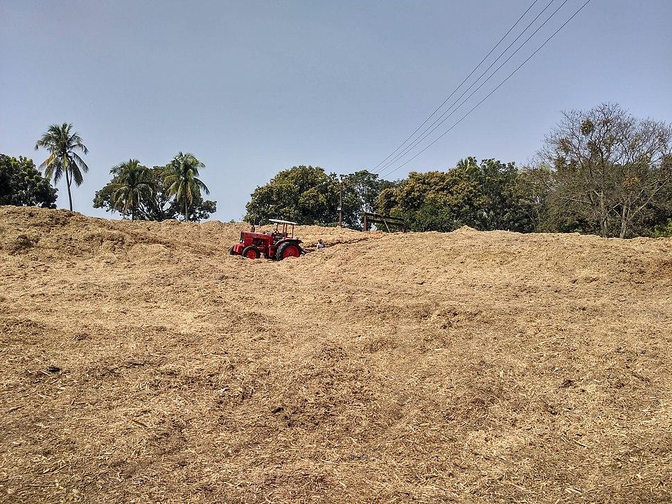 Bagasse of Thakurgaon Sugar Mills (02.03.2019)