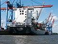 Baltic Petrel, WPAhoi, A 7, Hamburg (P1080498).jpg