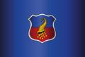 Bandera Copiapo.png