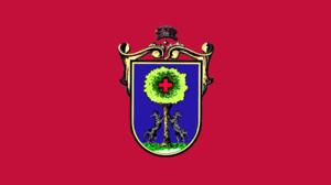 Etxebarri - Image: Bandera Etxebarri