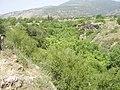 Banias river.JPG
