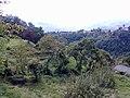 Barga, Province of Lucca, Italy - panoramio - jim walton (50).jpg