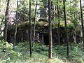 Bartošovice v Orlických horách, R-S 64 (rok 2010; 01).jpg