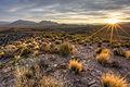 Basin and Range National Monument (21422808718).jpg