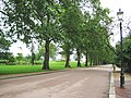 Battersea Park, The Parade - geograph.org.uk - 834826.jpg