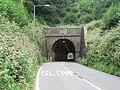 Beaminster, Horn Hill tunnel - geograph.org.uk - 935831.jpg
