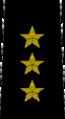 Belarus Police—01 Colonel General rank insignia (Black).png